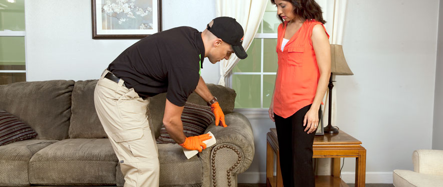 Arvada, CO carpet upholstery cleaning