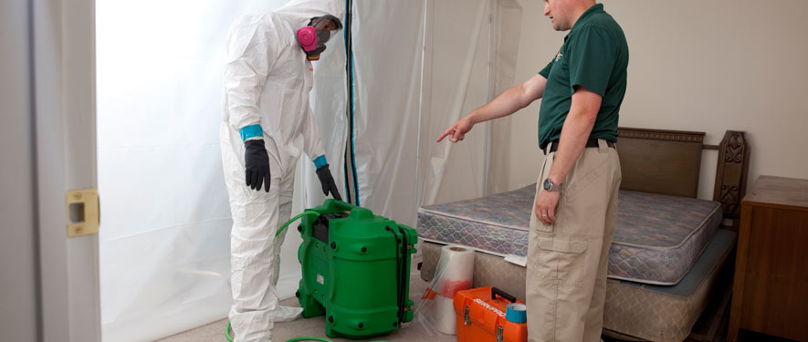 Arvada, CO mold removal process